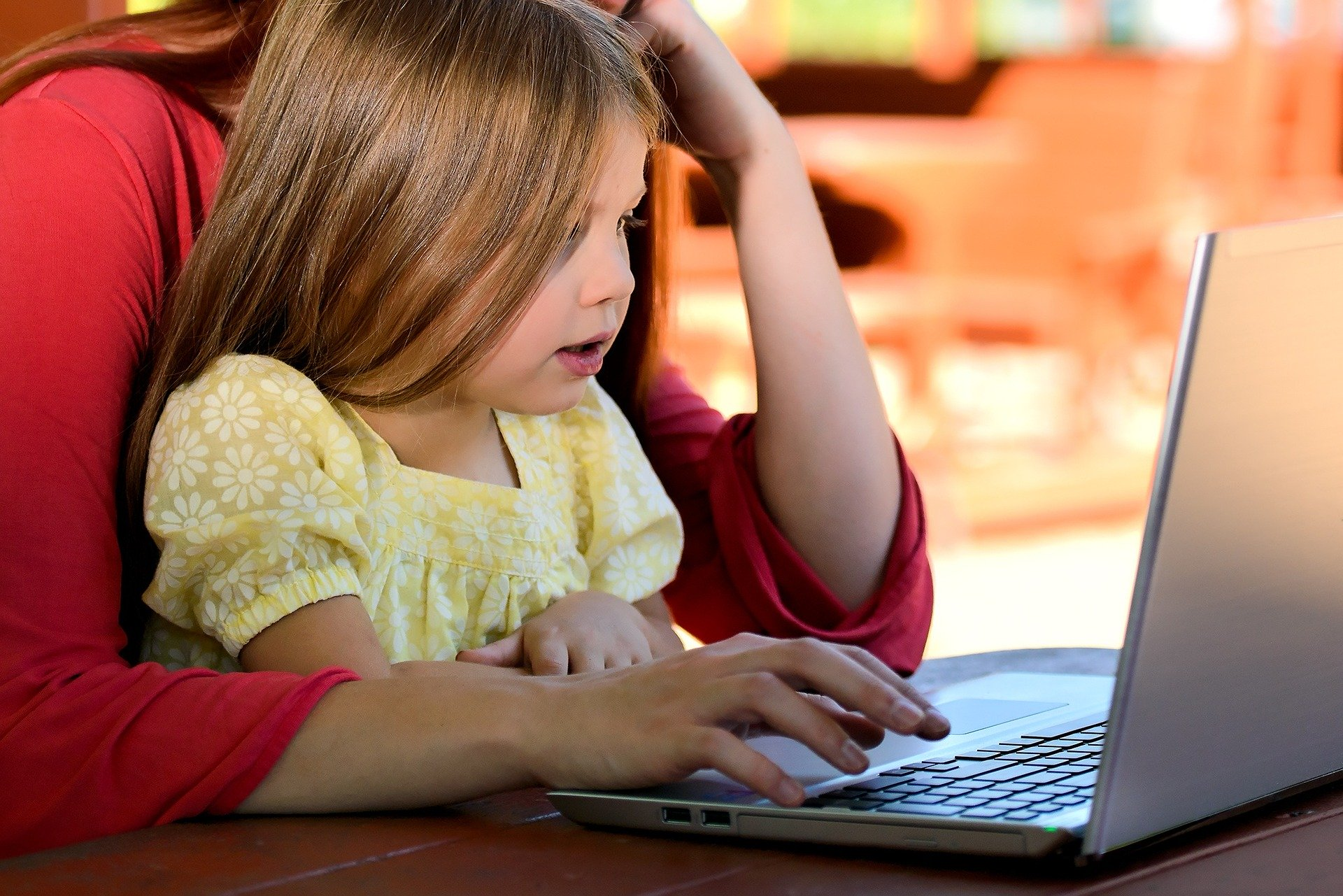 A child with a parent at the computer